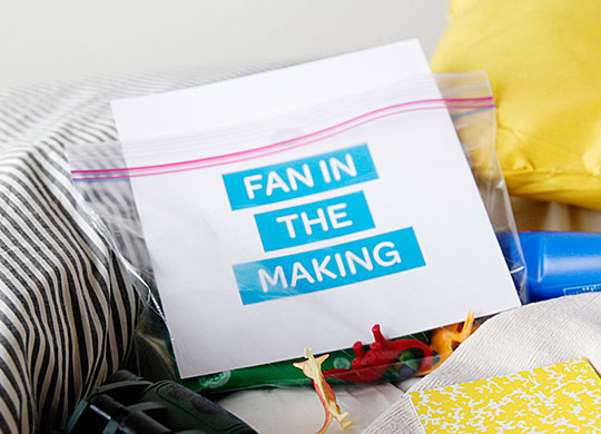 What's In Your Fan Bag?